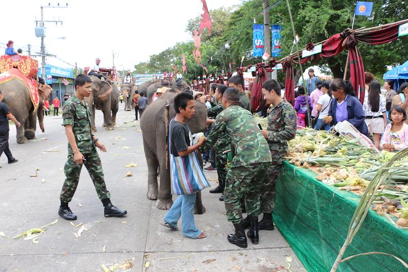 2014-11-14 Surin Elephant Welcome Feast 545