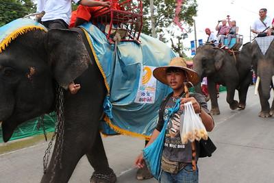 2014-11-14 Surin Elephant Welcome Feast 210