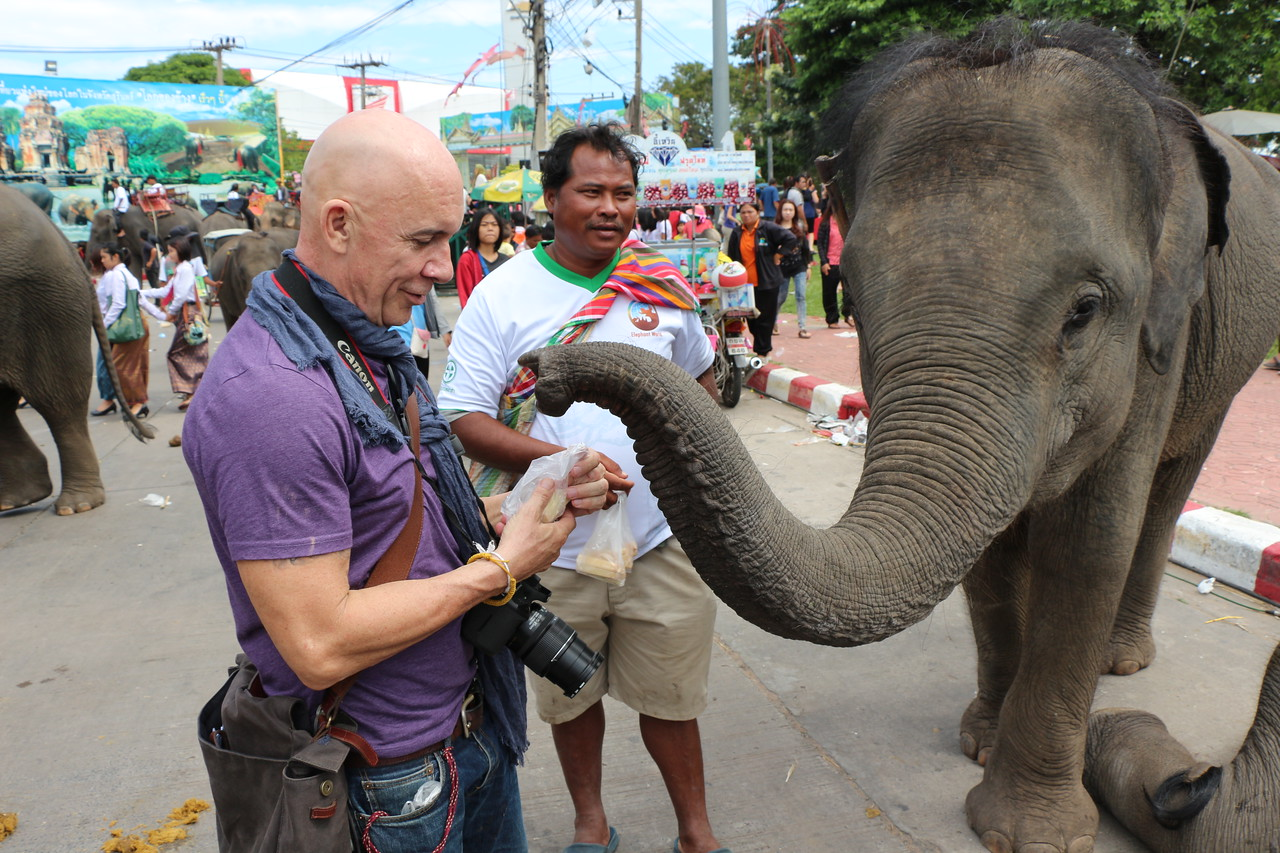 2014-11-14 Surin Elephant Welcome Feast 789