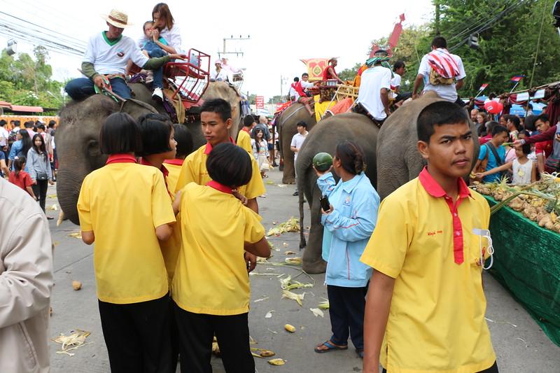 2014-11-14 Surin Elephant Welcome Feast 347.JPG