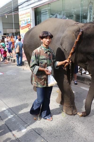 2014-11-14 Surin Elephant Welcome Feast 407