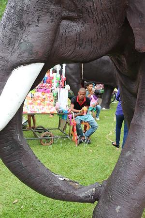 2014-11-14 Surin Elephant Welcome Feast 023