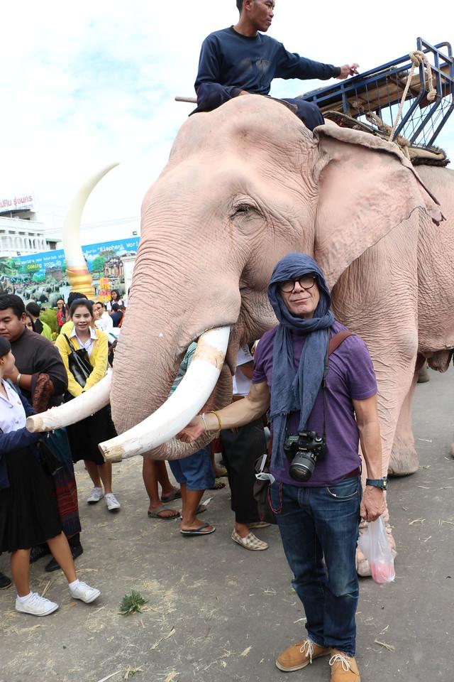 2014-11-14 Surin Elephant Welcome Feast 630