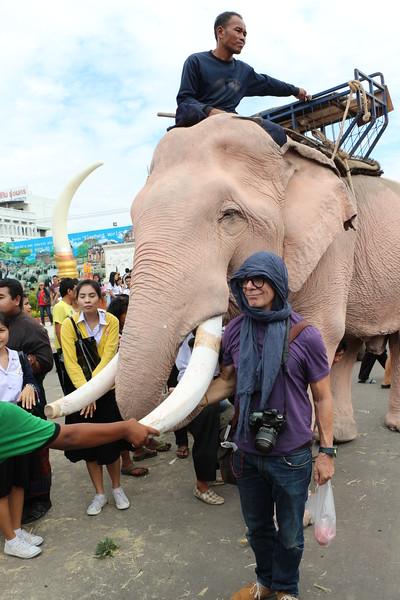 2014-11-14 Surin Elephant Welcome Feast 632.JPG