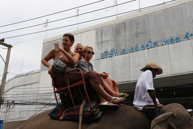 2014-11-14 Surin Elephant Welcome Feast 268