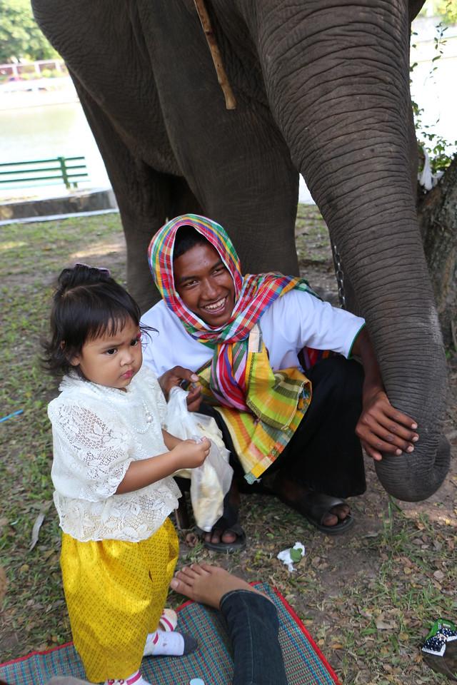 2014-11-14 Surin Elephant Welcome Feast 904