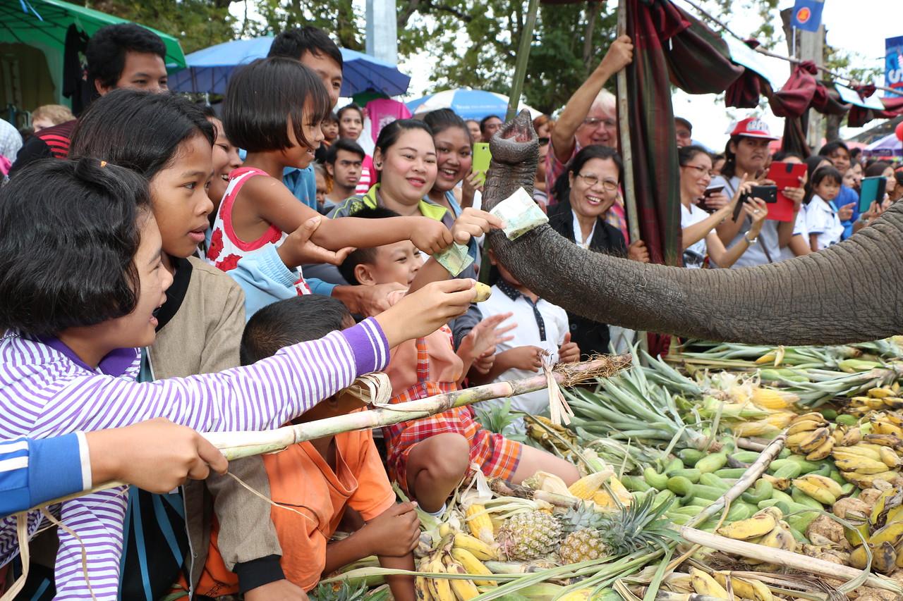2014-11-14 Surin Elephant Welcome Feast 310