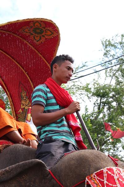 2014-11-14 Surin Elephant Welcome Feast 445.JPG