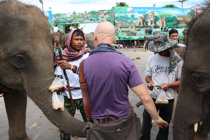2014-11-14 Surin Elephant Welcome Feast 828.JPG