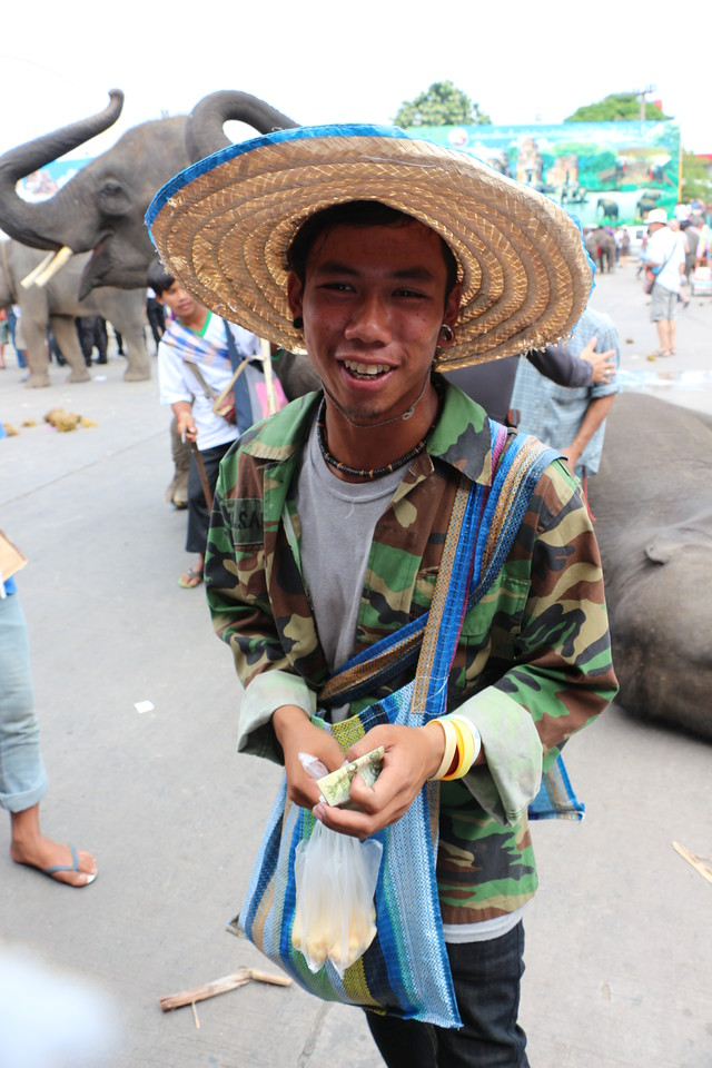 2014-11-14 Surin Elephant Welcome Feast 676