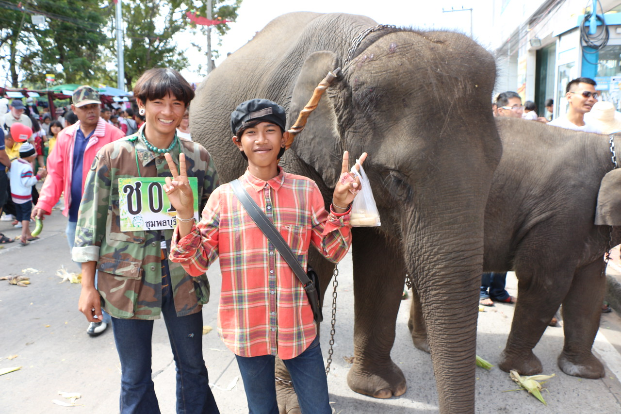 2014-11-14 Surin Elephant Welcome Feast 457