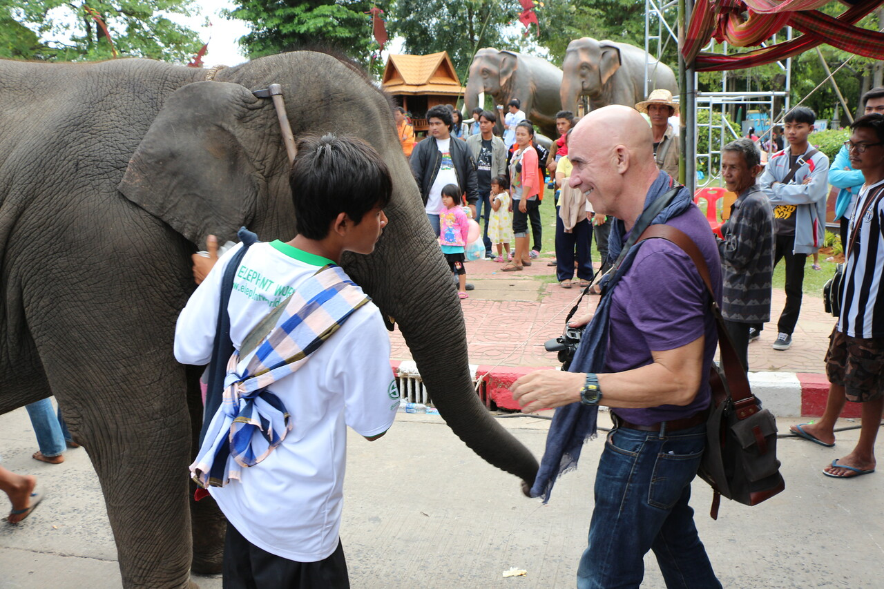 2014-11-14 Surin Elephant Welcome Feast 763