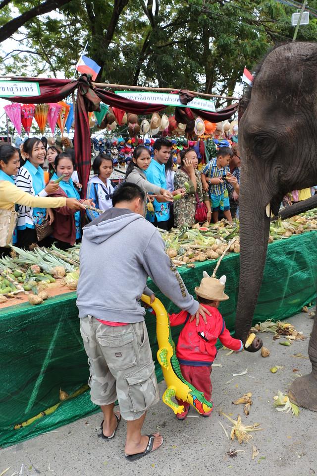 2014-11-14 Surin Elephant Welcome Feast 544