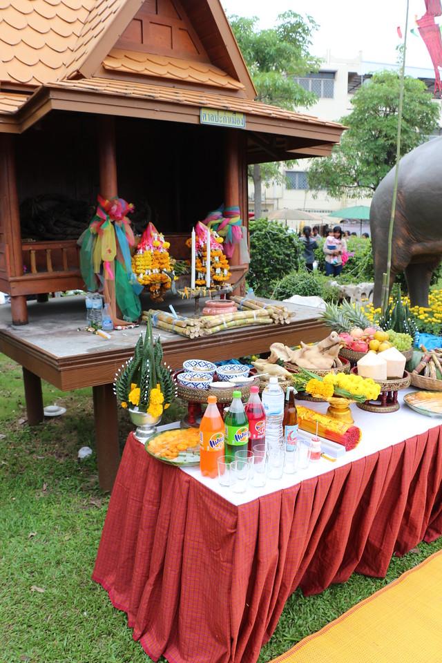 2014-11-14 Surin Elephant Welcome Feast 022