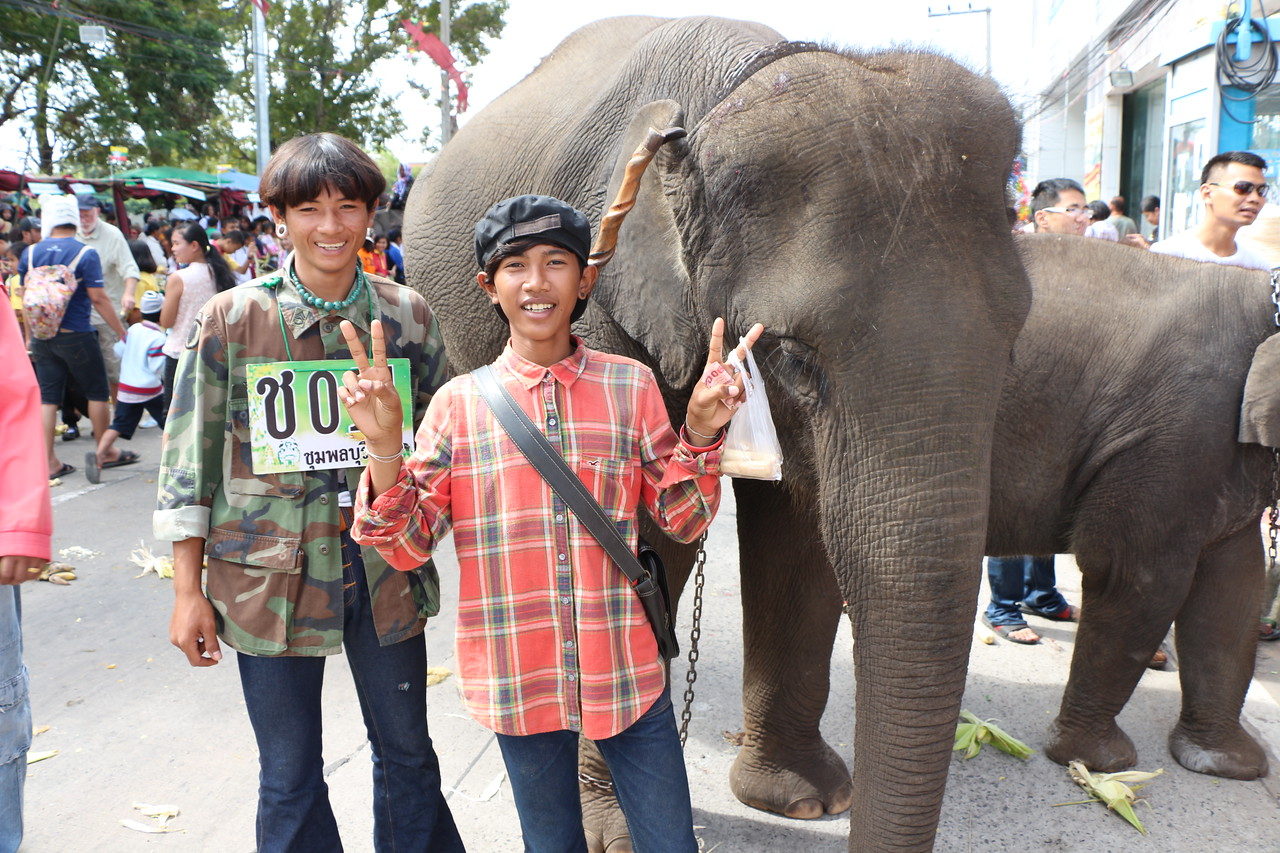 2014-11-14 Surin Elephant Welcome Feast 460
