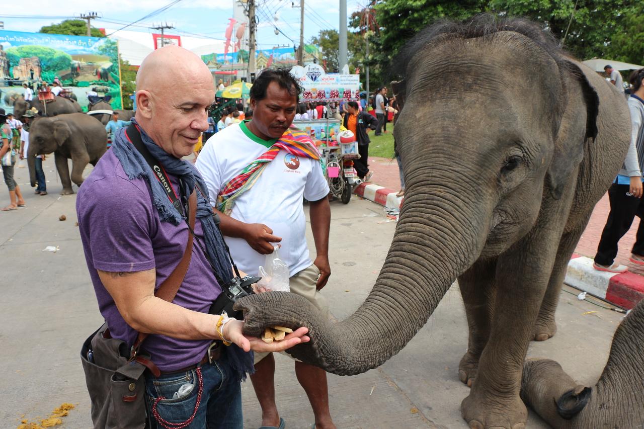 2014-11-14 Surin Elephant Welcome Feast 799