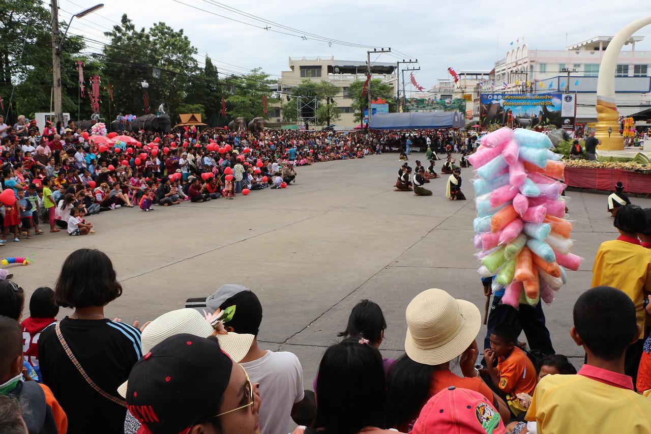 2014-11-14 Surin Elephant Welcome Feast 046