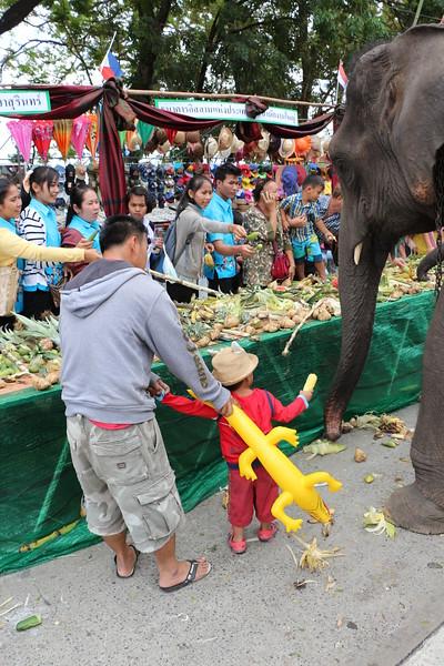 2014-11-14 Surin Elephant Welcome Feast 541.JPG