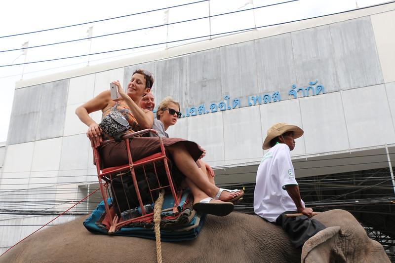 2014-11-14 Surin Elephant Welcome Feast 269.JPG