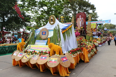 2014-11-14 Surin Elephant Welcome Feast 116