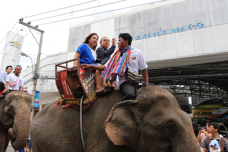 2014-11-14 Surin Elephant Welcome Feast 249.JPG