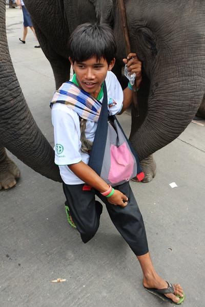 2014-11-14 Surin Elephant Welcome Feast 714