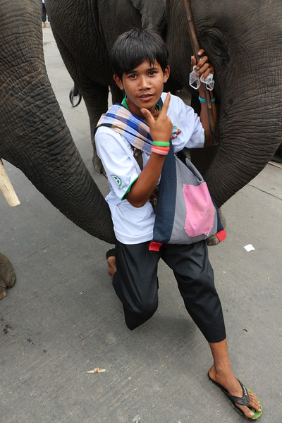 2014-11-14 Surin Elephant Welcome Feast 710