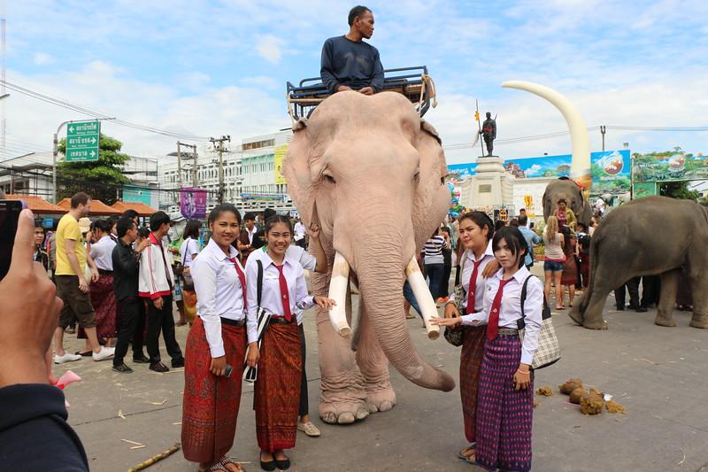 2014-11-14 Surin Elephant Welcome Feast 759.JPG