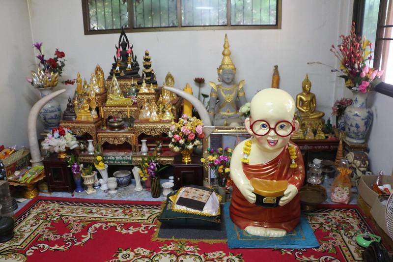 2014-11-14 Surin Elephant Welcome Feast 864.JPG