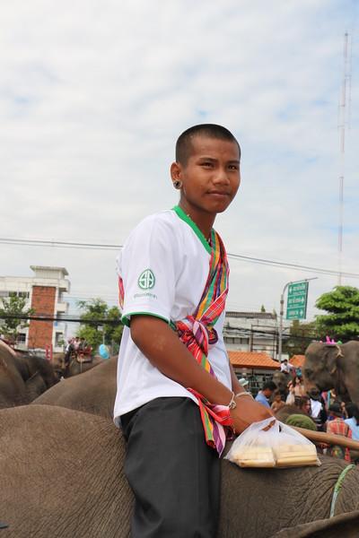2014-11-14 Surin Elephant Welcome Feast 849