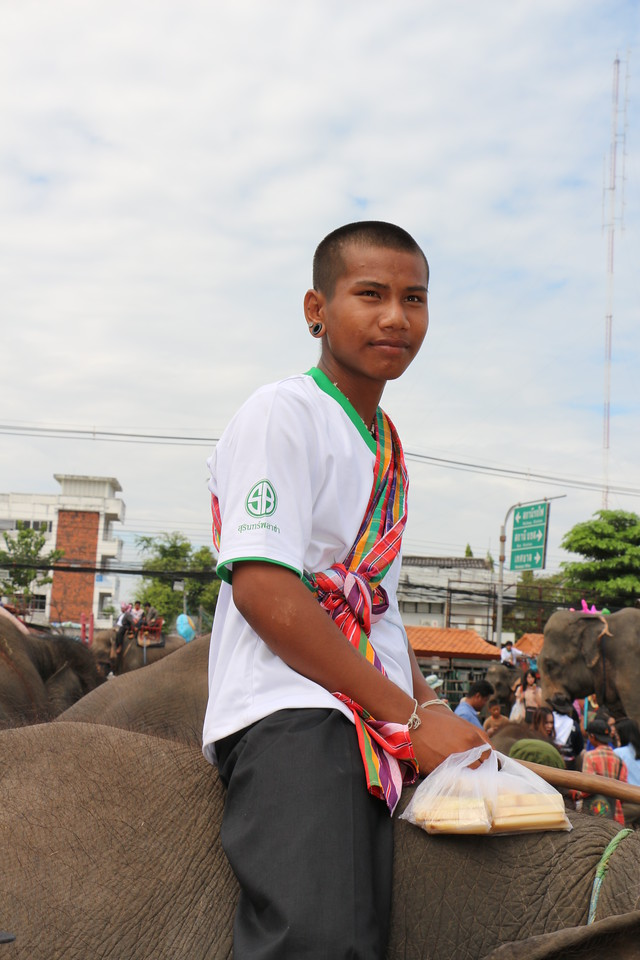 2014-11-14 Surin Elephant Welcome Feast 849