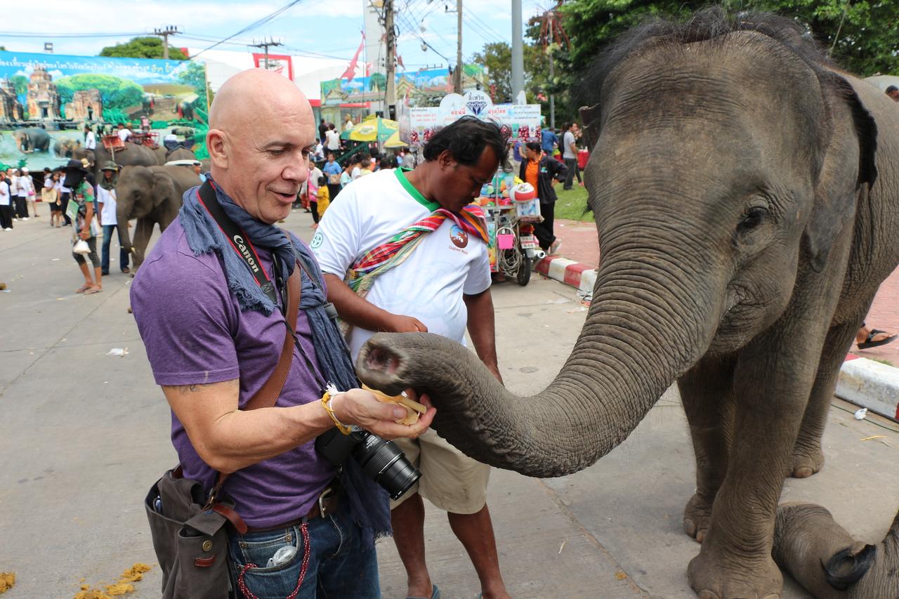2014-11-14 Surin Elephant Welcome Feast 797
