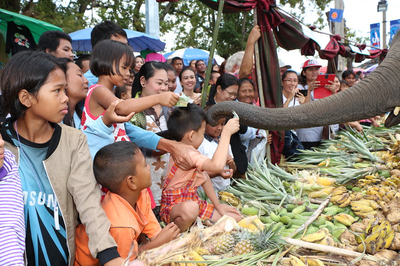 2014-11-14 Surin Elephant Welcome Feast 308.JPG