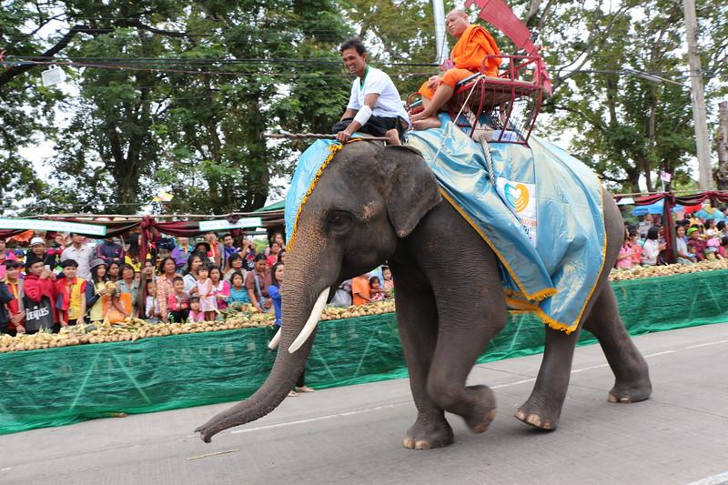 2014-11-14 Surin Elephant Welcome Feast 158