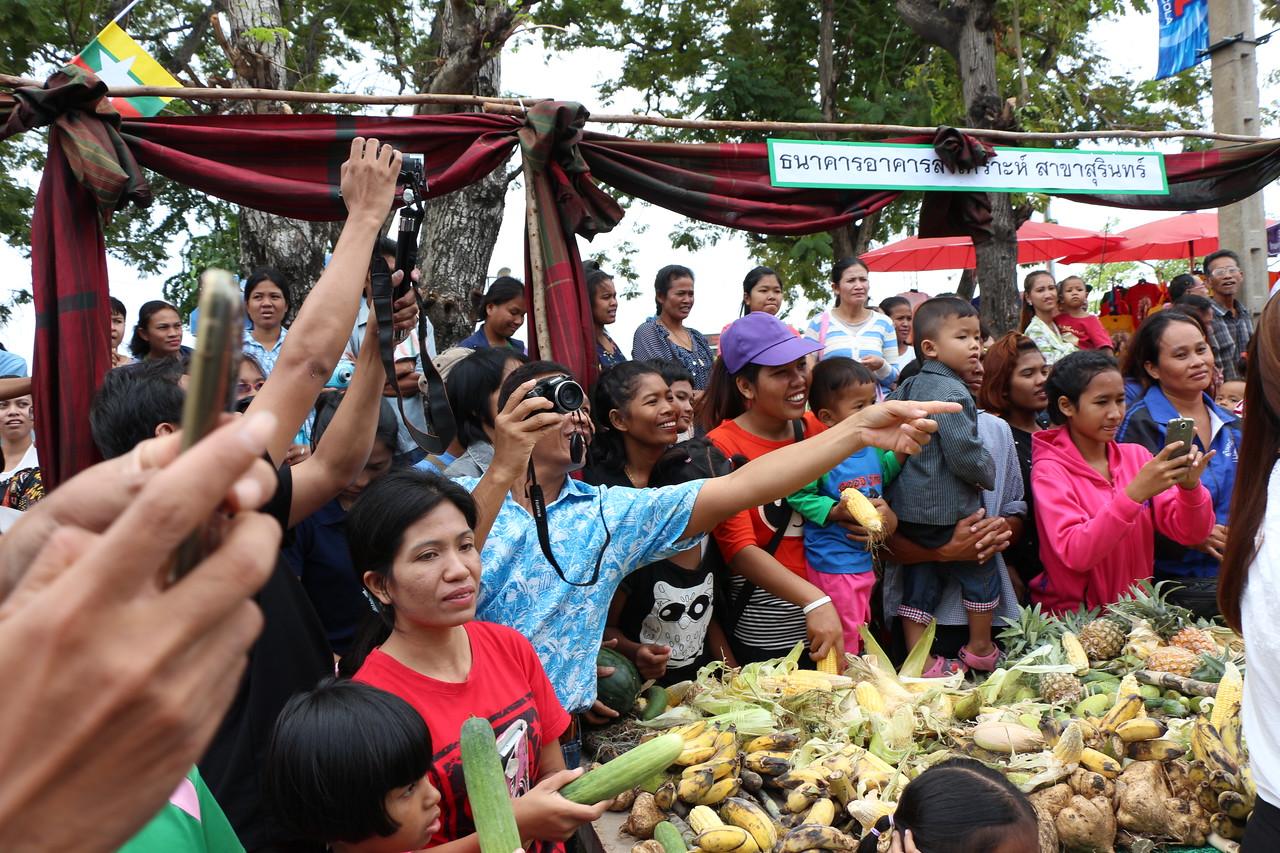 2014-11-14 Surin Elephant Welcome Feast 240