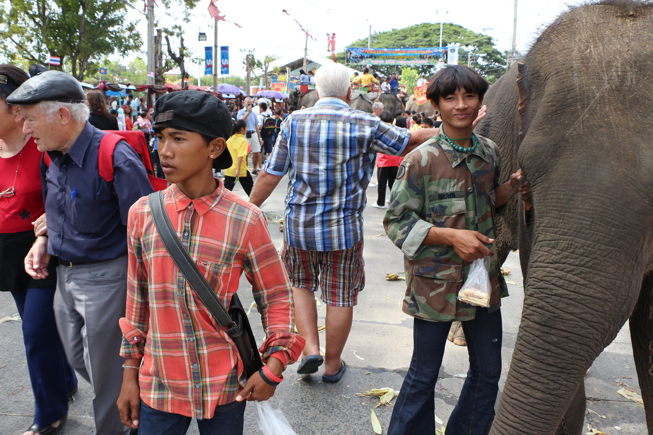 2014-11-14 Surin Elephant Welcome Feast 424