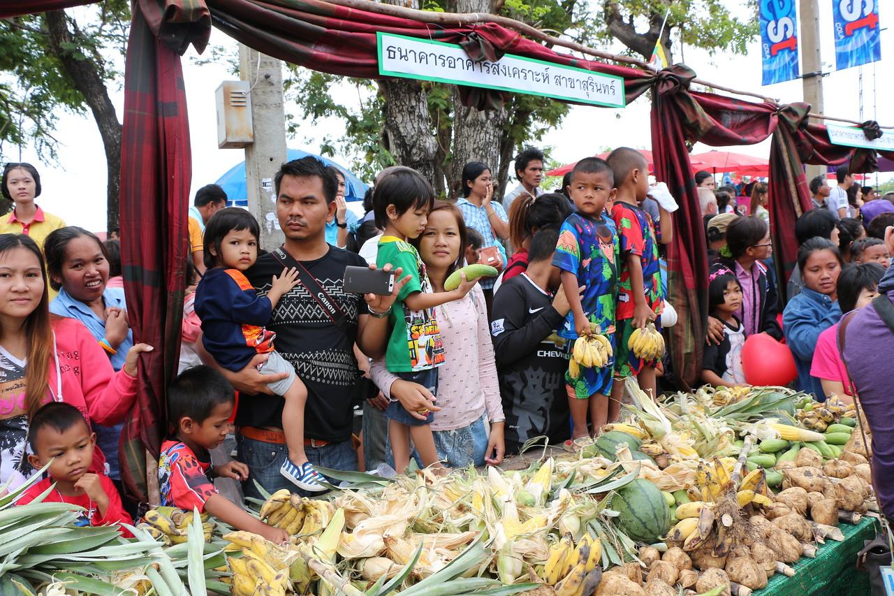 2014-11-14 Surin Elephant Welcome Feast 226