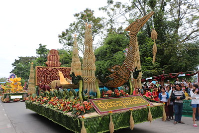 2014-11-14 Surin Elephant Welcome Feast 115