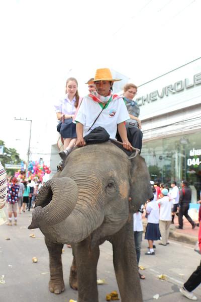2014-11-14 Surin Elephant Welcome Feast 369