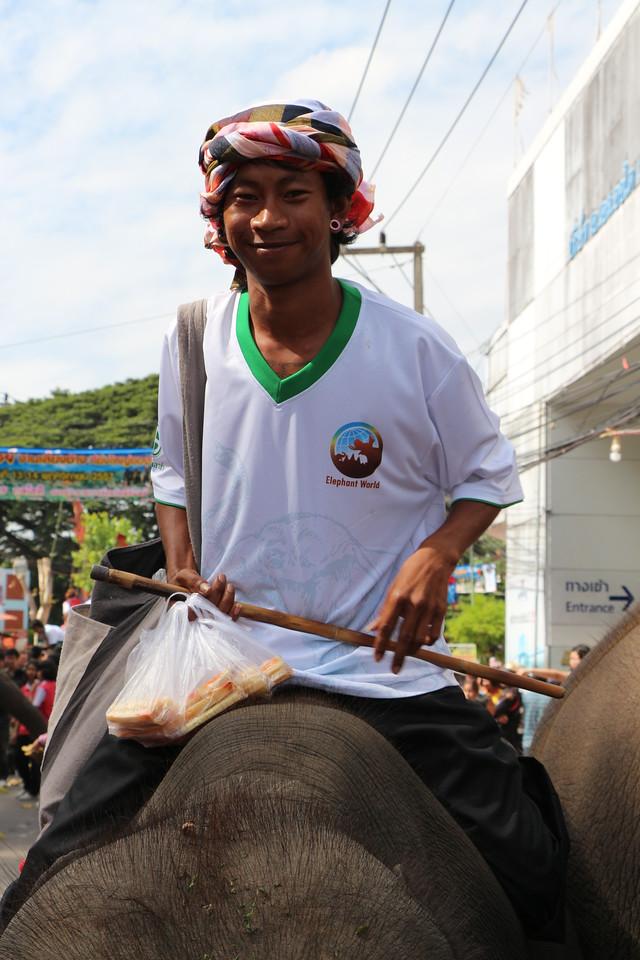 2014-11-14 Surin Elephant Welcome Feast 390