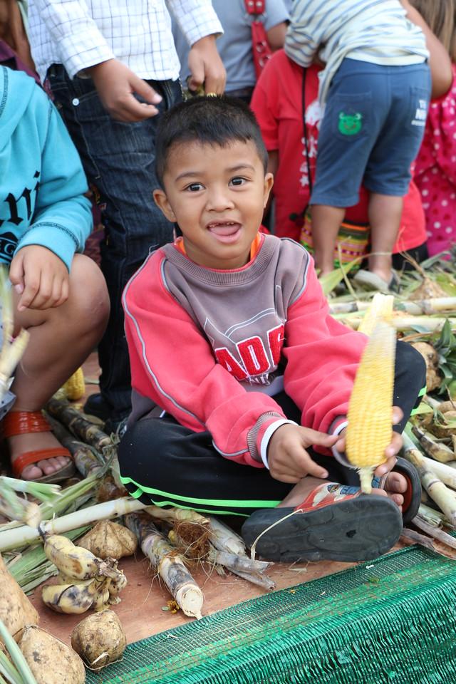 2014-11-14 Surin Elephant Welcome Feast 381