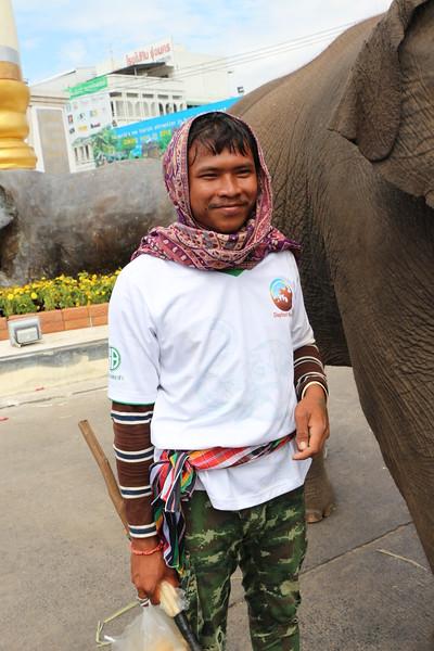 2014-11-14 Surin Elephant Welcome Feast 836