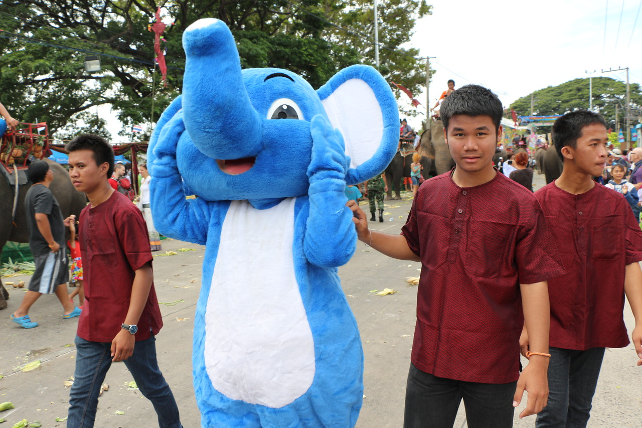 2014-11-14 Surin Elephant Welcome Feast 513