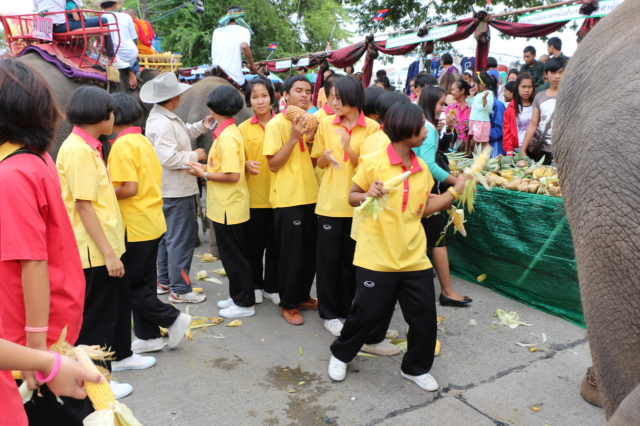 2014-11-14 Surin Elephant Welcome Feast 345