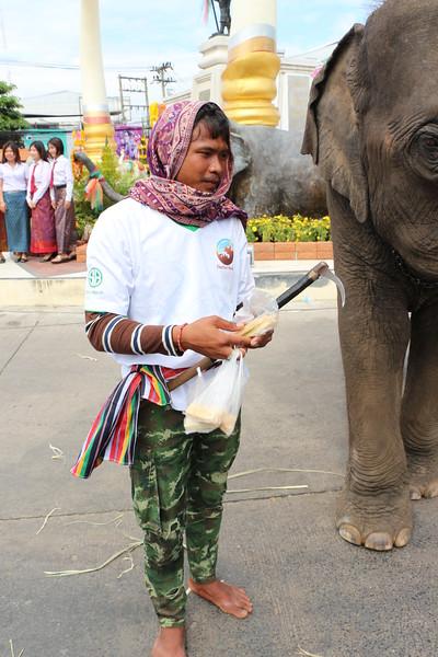 2014-11-14 Surin Elephant Welcome Feast 830.JPG