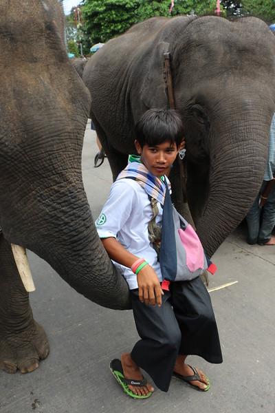 2014-11-14 Surin Elephant Welcome Feast 704