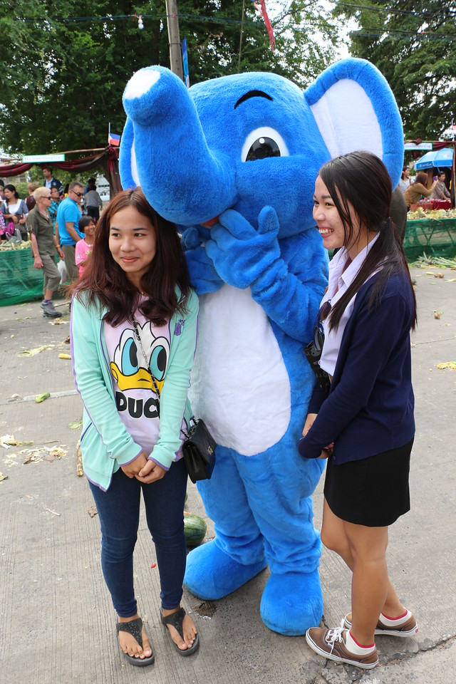 2014-11-14 Surin Elephant Welcome Feast 516