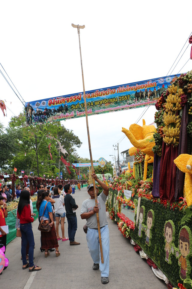 2014-11-14 Surin Elephant Welcome Feast 111