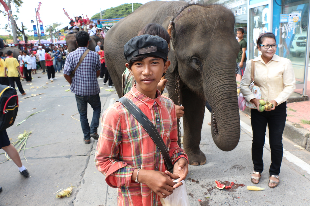 2014-11-14 Surin Elephant Welcome Feast 436