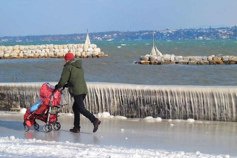 Scène de vie, Genève, hiver 2015